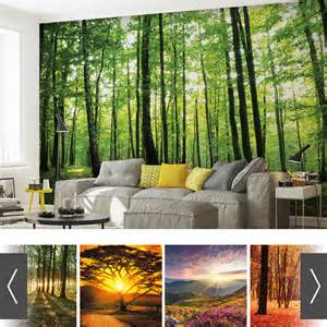 wall mural from photo forest wood nature wall mural photo wallpaper 20