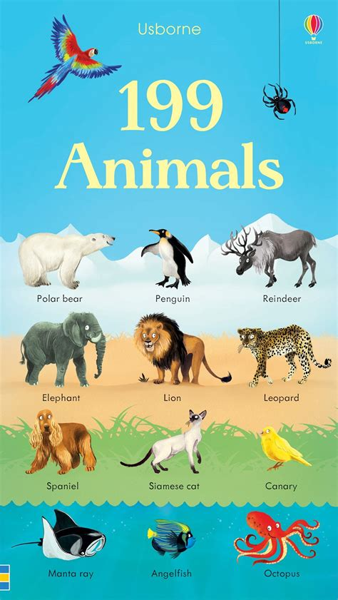 picture books about animals 199 animals at usborne children s books