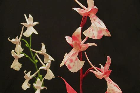 beautiful origami flowers 20 beautiful origami flowers that look almost like the