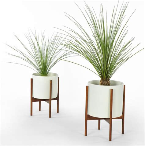 modern plants indoor beautify your home with modern indoor pots and planters