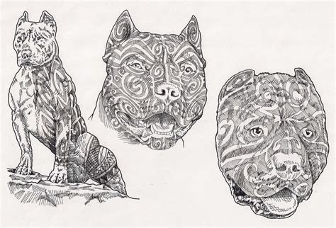 pitbulls with moko by davehortontattoos on deviantart