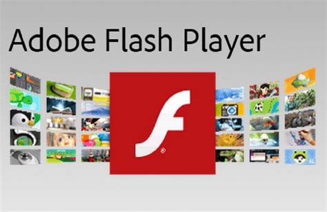 adobe flash player the real risk the adobe flash player for mac is