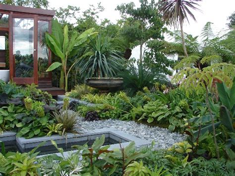 tropical backyard design ideas tropical garden decoist