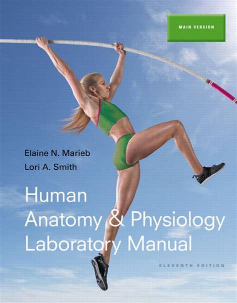 human anatomy physiology plus masteringa p with etext marieb smith human anatomy physiology laboratory