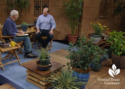 Garden Center Killeen Powerful Perennials New Ideas For Front Yard