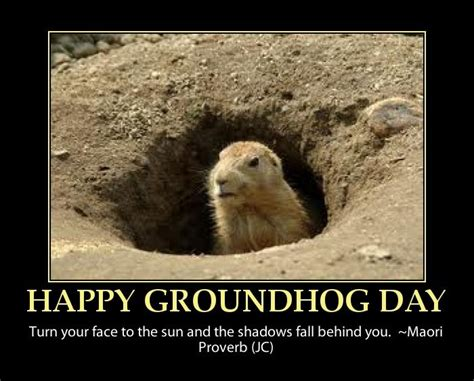 groundhog day quotes happy groundhog day quote groundhog day