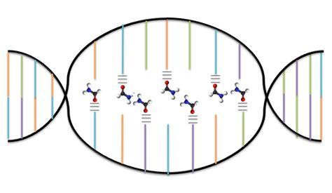 bead mill wiki wiki denaturation biochemistry upcscavenger