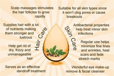 jojoba benefits how to use jojoba for acne prone skin