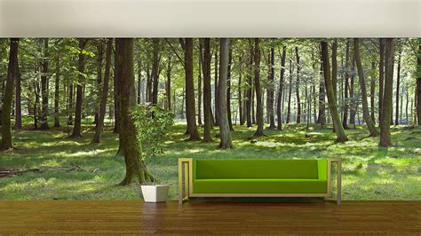 Wallpaper Wall Mural woodland forest self adhesive wallpaper by oakdene designs