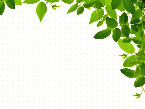 real leaves design ppt backgrounds nature templates