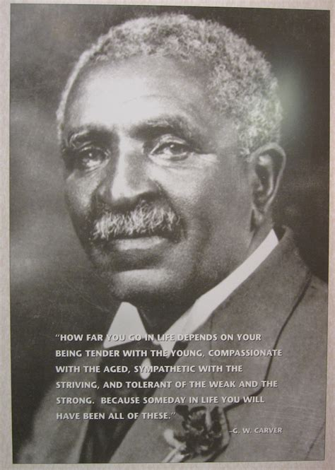 a picture book of george washington carver george washington carver quotes quotesgram