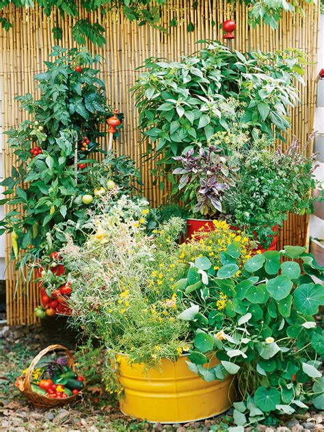 how to make a small vegetable garden how to make a small vegetable garden home designs project