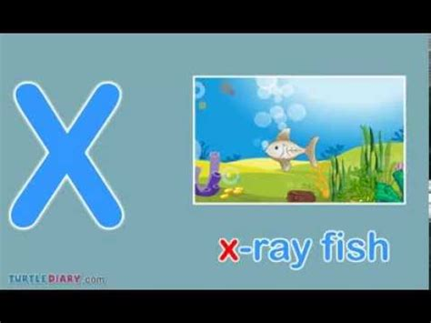 3 letter x words scrabble starts with x toddler words words starting with x