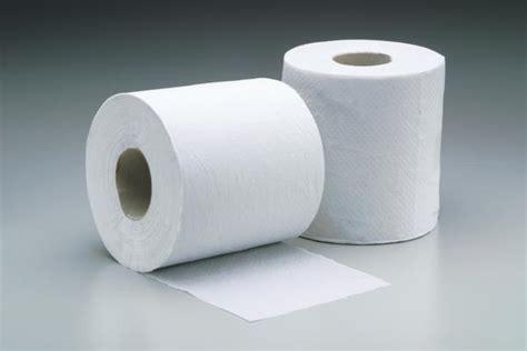 with toilet paper princess pignatelli fashion toilet tissue vs toilet paper