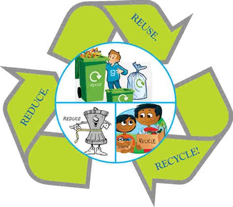 waste management tree why rubbish removal service is important