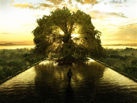 tree represents the tree of represents the spiritual point of balance