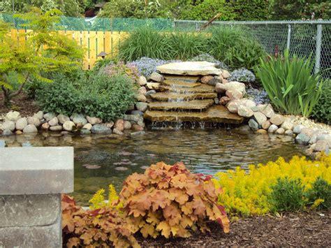 building backyard pond building a backyard pond glenns garden gardening