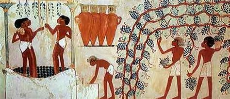 Ancient Egyptian Wall Murals grapes season starting after long wait fruit link fresh