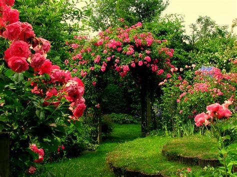 flowers garden pictures garage flowers in beautiful garden pictures