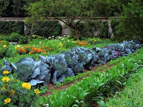 vegetable gardens vegetable garden design ideas hgtv