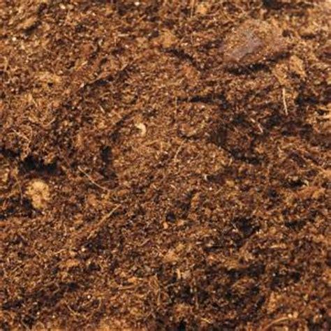 culture du cannabis en pots de terre du growshop alchimia