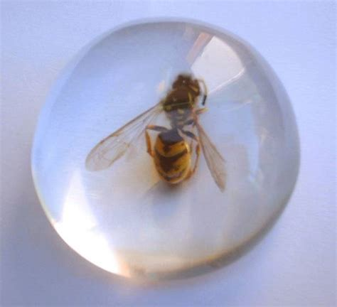 with resin resin polyester clear pu resin