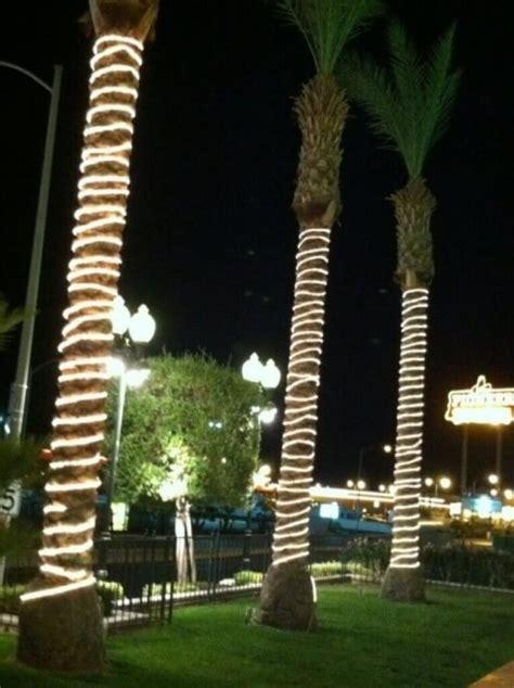 led rope light tree rope light trees 28 images mains voltage festive tree