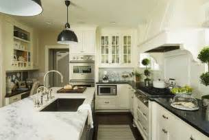 dove white kitchen cabinets benjamin white dove cabinets transitional