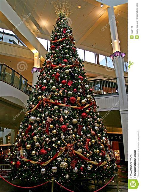 mall tree mall tree royalty free stock photos image 1530138