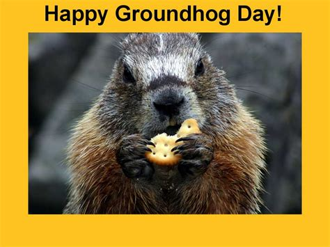 how to groundhog day an early is on the way according to groundhog