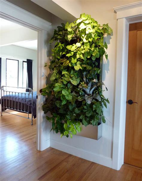 indoor wall garden living walls for small spaces gardens guest post