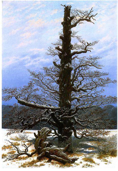 tree in the snow file oak tree in the snow jpg wikimedia commons