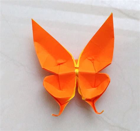 origami butterfly swallowtail origami