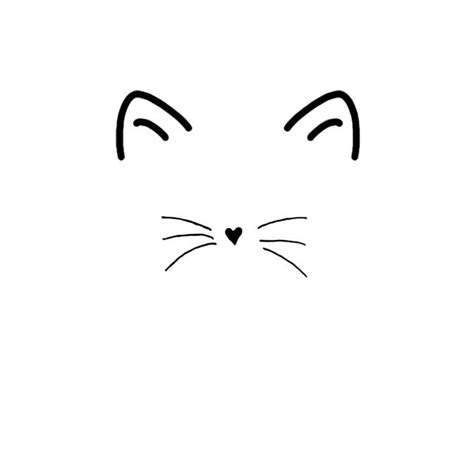 cat nose and whiskers 25 best ideas about cat drawing on cat