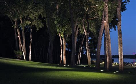 landscape lighting for trees how you can use outdoor lighting to highlight your landscape