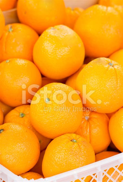fruit plastic orange fruit in plastic stock photos freeimages