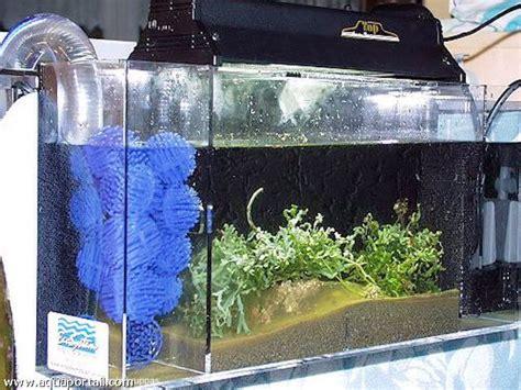 comment construire un aquarium en plexiglas la r 233 ponse est sur admicile fr