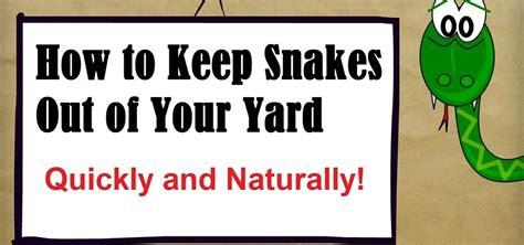 how to make a snake out of how to keep snakes out of your yard 171 housekeeping