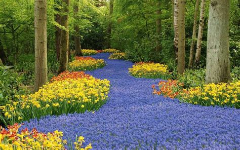 flower gardens in the world the largest flower gardens in the world gardening at