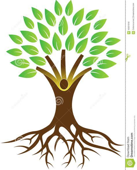 tree represents root tree stock vector image of grow develop beautiful