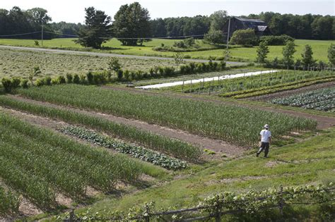 how to make a living from a 1 5 acre market garden