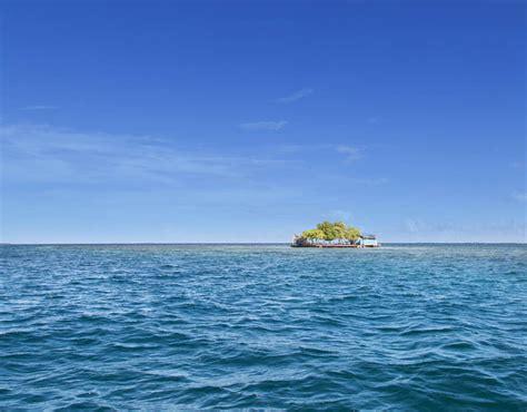 bird island placencia belize top islands you