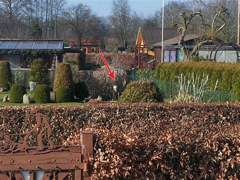 Wo War Der Garten by Der Garten Erwacht Katekit S Garten