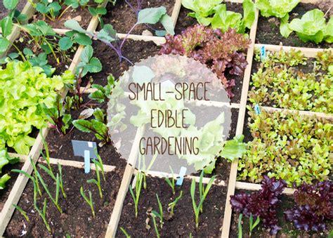 growing fruit amp vegetables in small spaces urban turnip