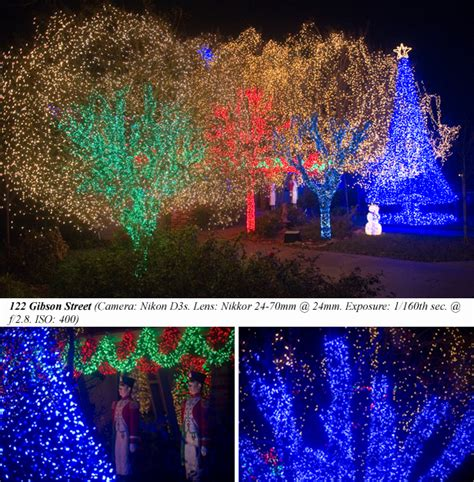 how to wrap lights around tree branches how to wrap lights around tree branches designs