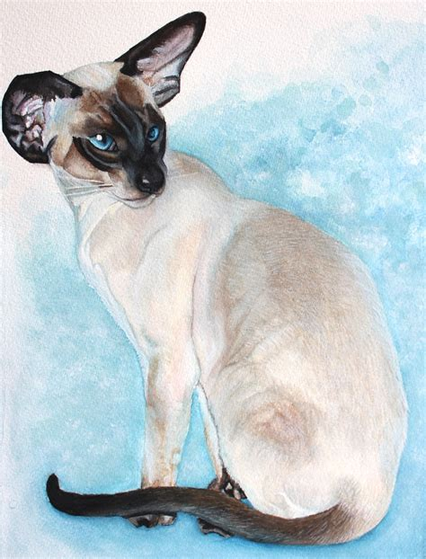 siamese cat painting seal point siamese cat painting feline sapien