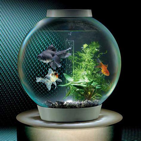 Software To Design Kitchen biorb self filtering aquarium the green head