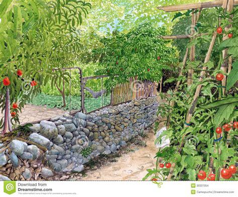 vegetable garden drawing vegetable garden drawing