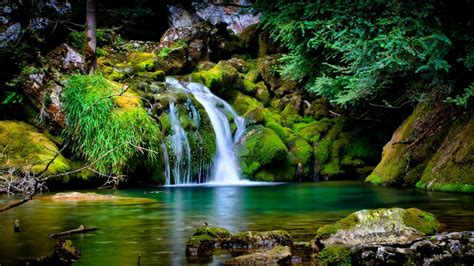 Cool Hd Wallpapers Nature by Cool Nature Wallpapers Sf Wallpaper