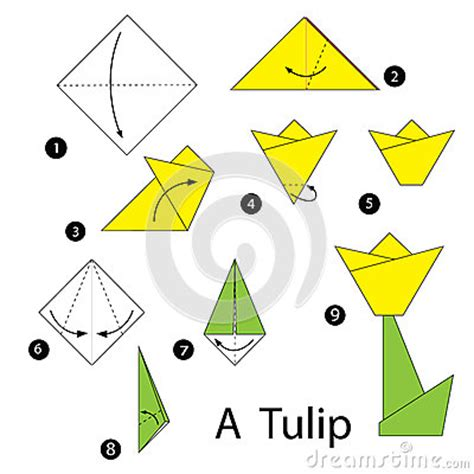 origami tulip step by step step by step how to make origami tulip stock